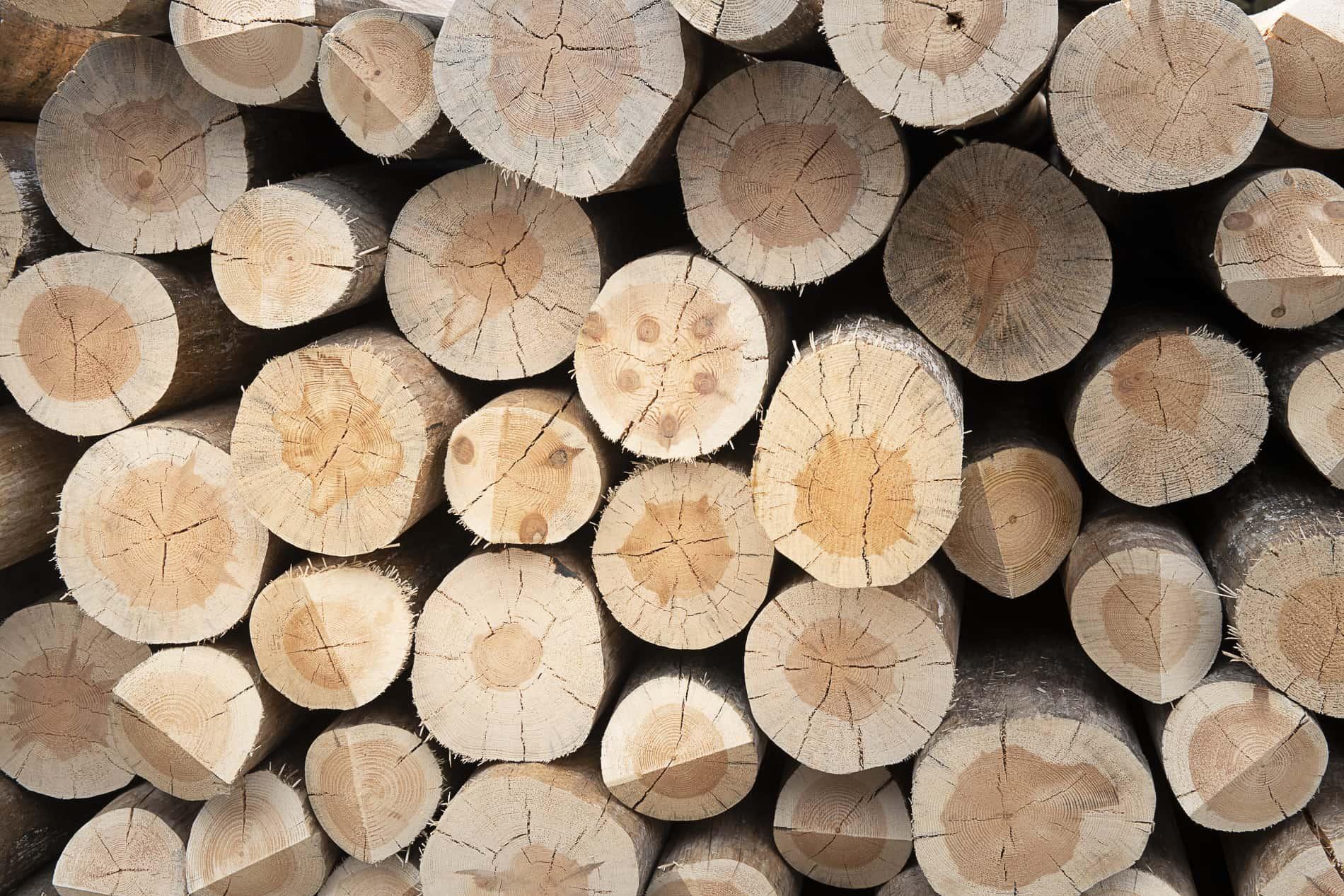Stella Spa pali legno slide6